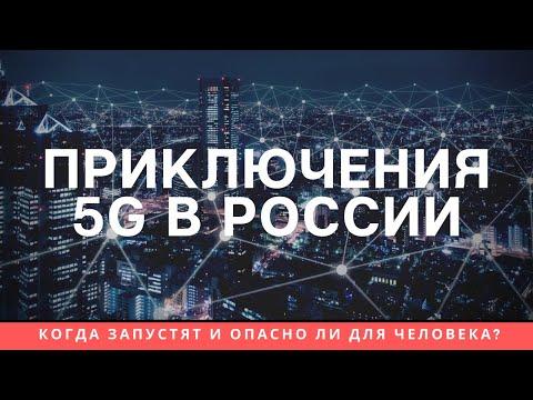 5G в России: когда запустят и опасен ли он для человека?