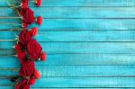 Красные розы на